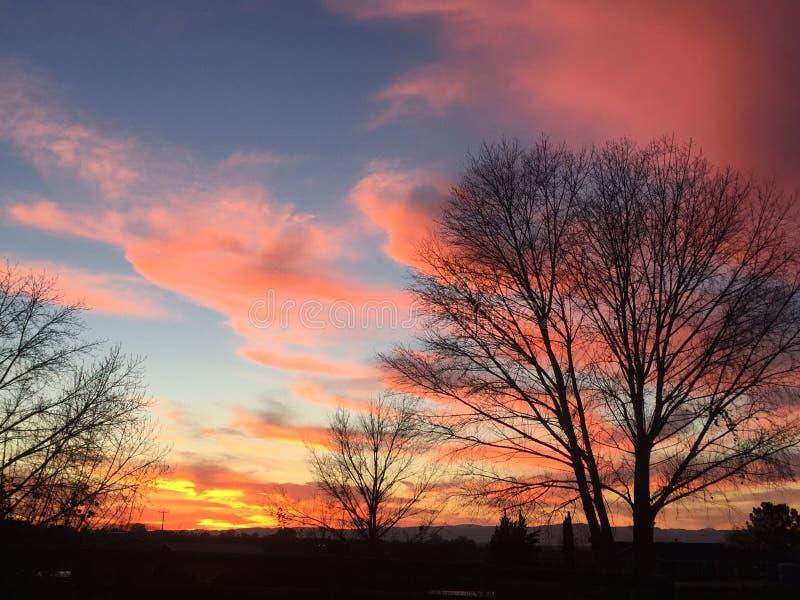 Puesta del sol rural del rancho del país vinícola con los árboles y las nubes fotos de archivo libres de regalías