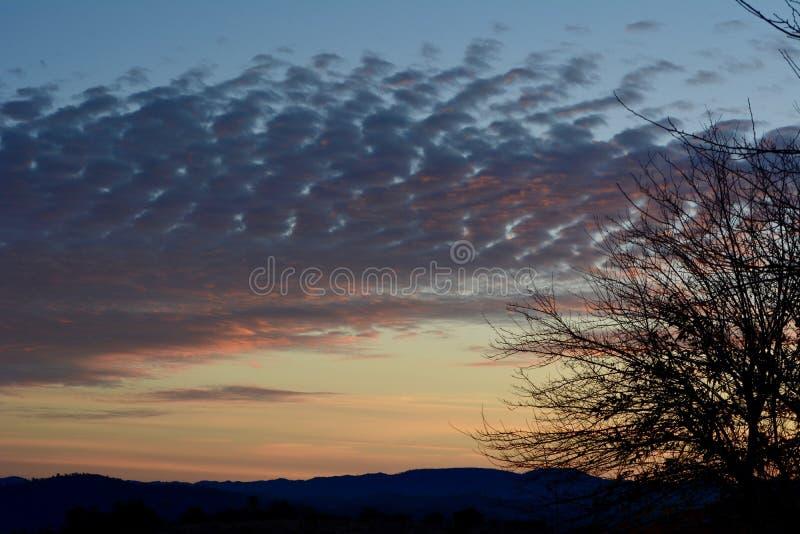 Puesta del sol rural del rancho del país vinícola con los árboles y las nubes imágenes de archivo libres de regalías