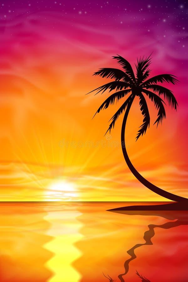 Puesta del sol, salida del sol con la palmera libre illustration