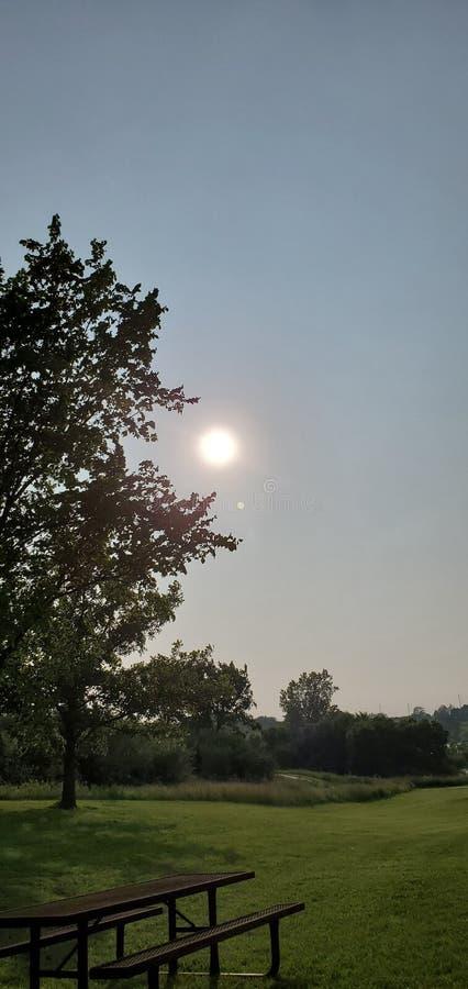 Puesta del sol salvaje hermosa fotografía de archivo