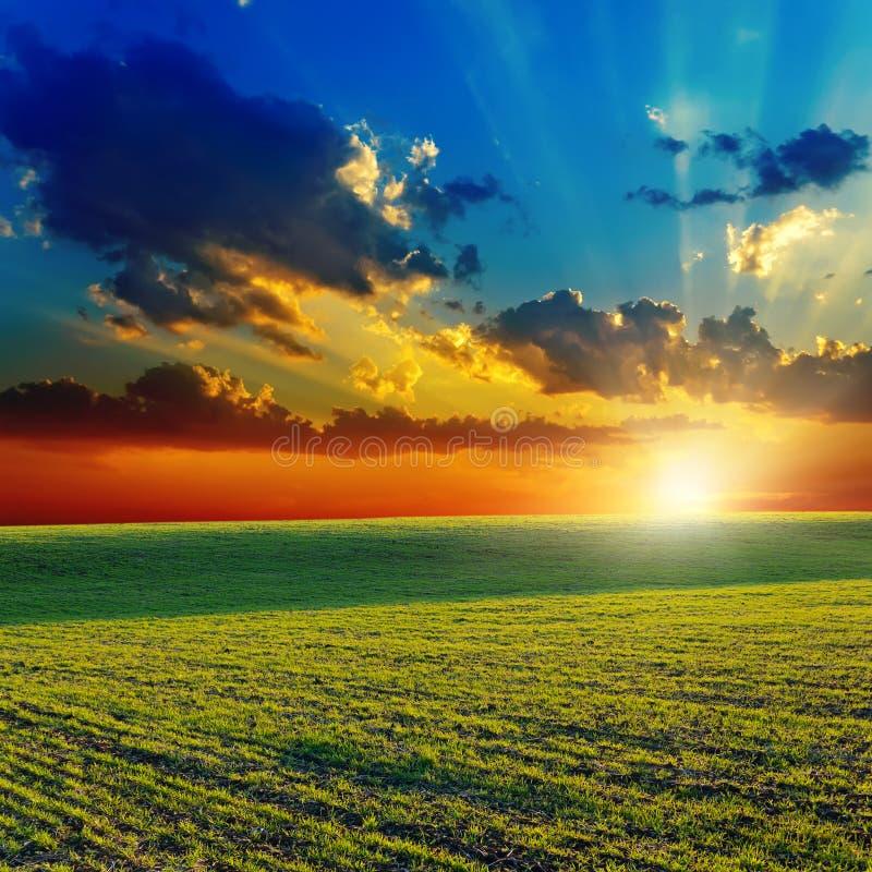 Puesta del sol sobre campo verde foto de archivo libre de regalías
