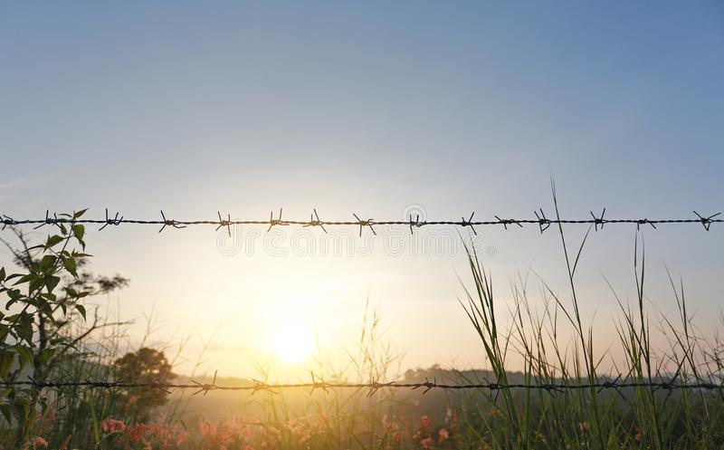 Puesta del sol sobre campos con las cercas del alambre de púas fotografía de archivo libre de regalías