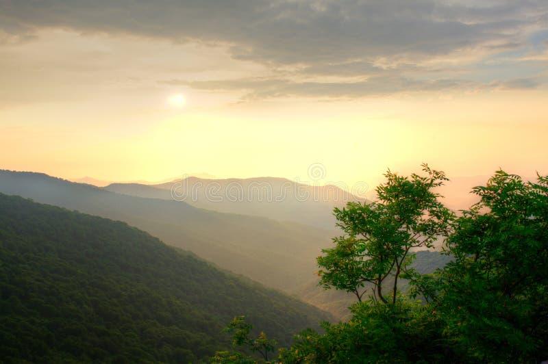 Download Puesta Del Sol Sobre El Bosque Foto de archivo - Imagen de outdoors, nubes: 41900992