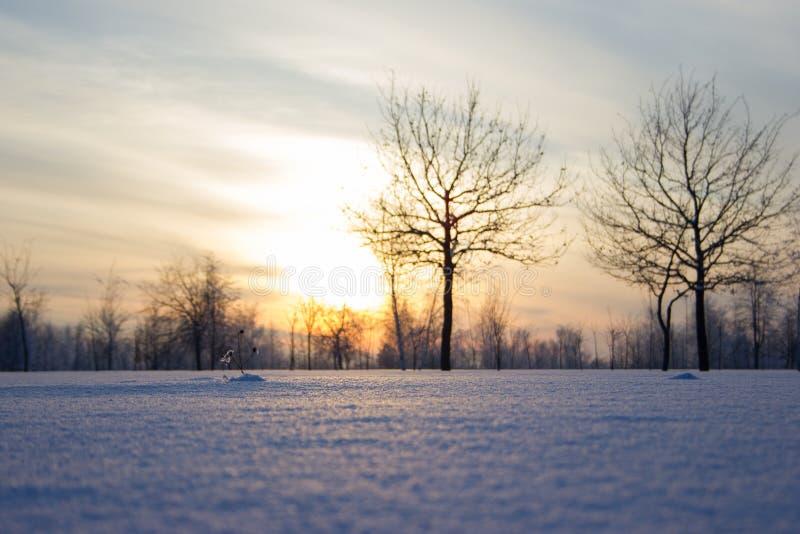Puesta del sol sobre el campo. imagen de archivo
