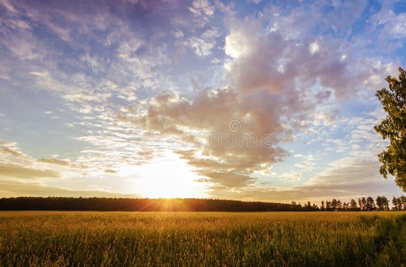 Puesta del sol sobre el campo imagen de archivo libre de regalías