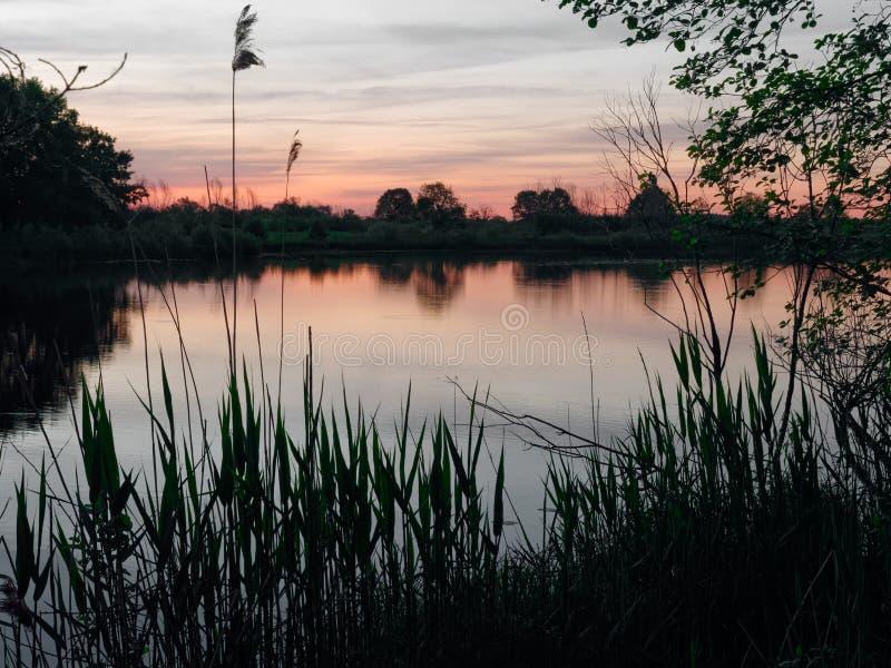 Puesta del sol sobre el río en los rayos del sol de igualación imagen de archivo