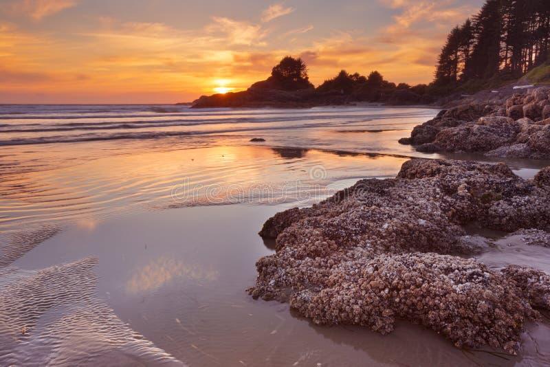 Puesta del sol sobre la playa de la bahía de $cox, isla de Vancouver, Canadá fotografía de archivo
