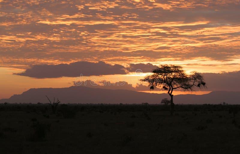 Puesta del sol sobre safari africano imagenes de archivo