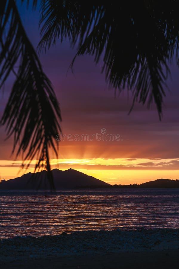 Puesta del sol sobre Sanya con el árbol de coco que enmarca la puesta del sol fotos de archivo