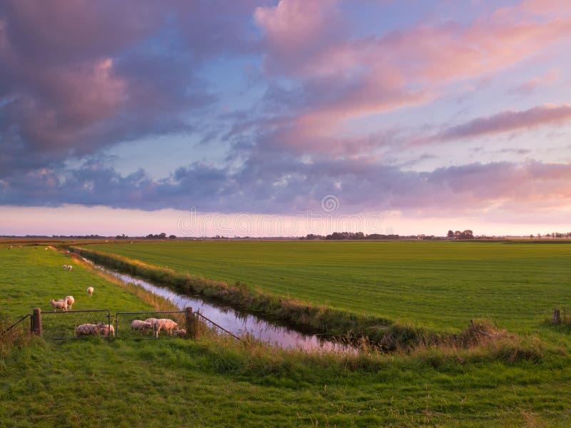 Puesta del sol sobre tierras de labrantío en los Países Bajos imagen de archivo