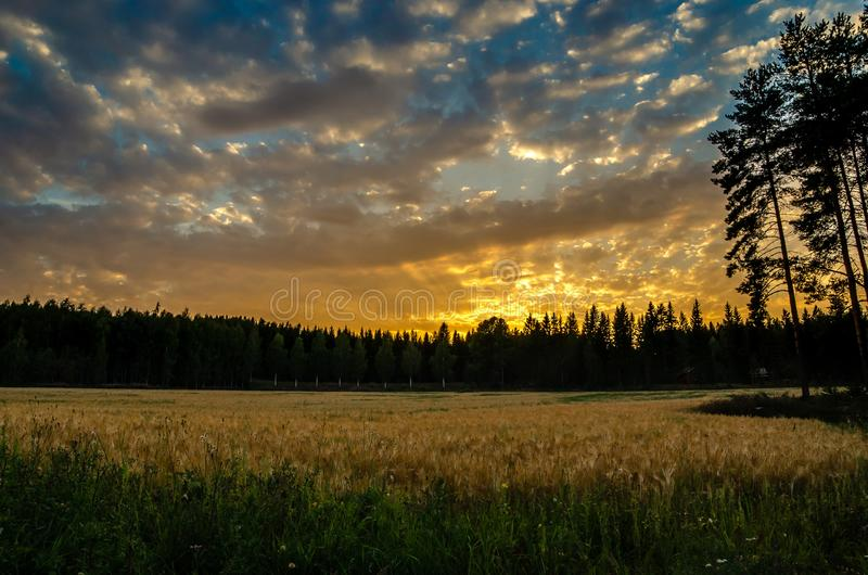 Puesta del sol sobre un campo con las nubes agradables fotos de archivo