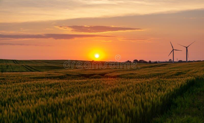 Puesta del sol sobre un campo o un prado con los molinoes de viento en el fondo foto de archivo