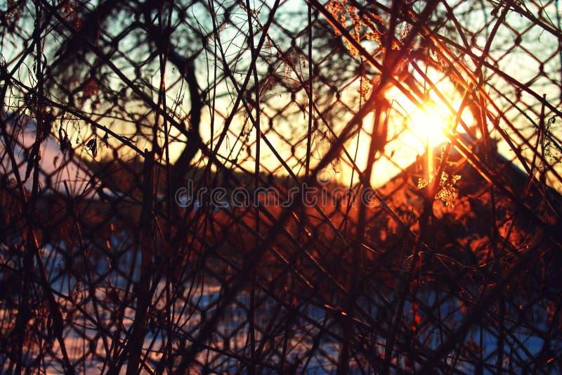 Puesta del sol a través de la cerca imágenes de archivo libres de regalías