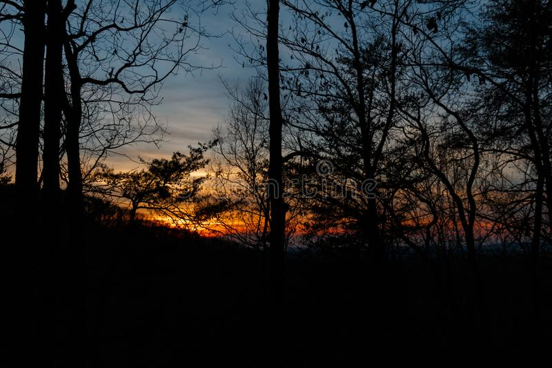 Puesta del sol a través de los árboles y de los miembros imagen de archivo