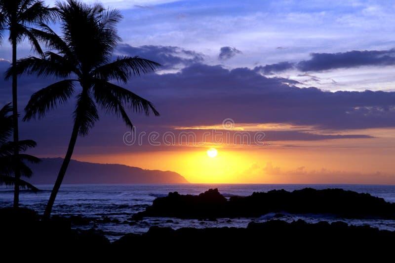 Puesta del sol tropical 1.3 foto de archivo libre de regalías