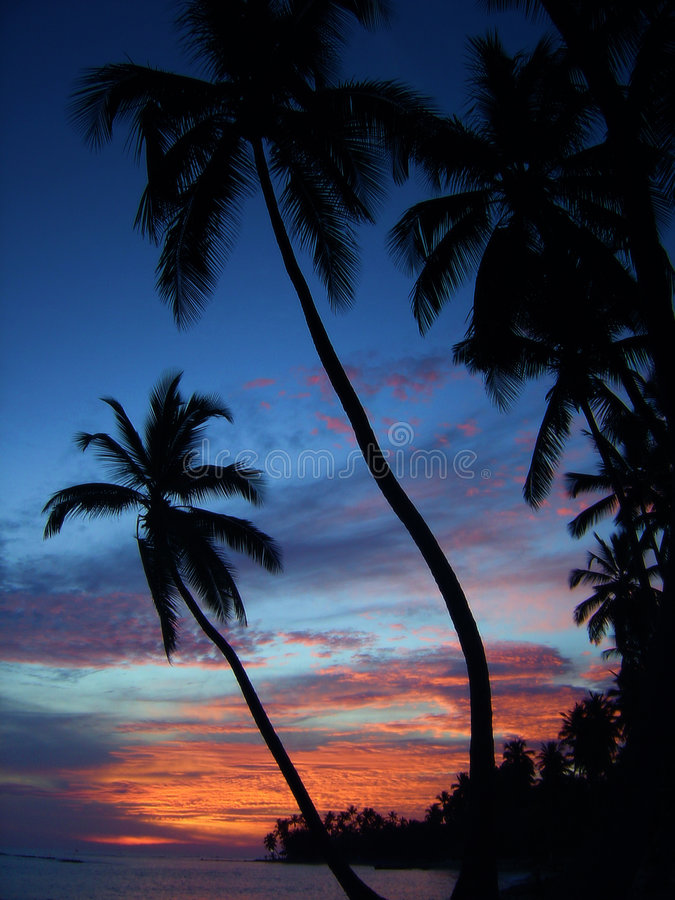 Puesta del sol tropical fotografía de archivo