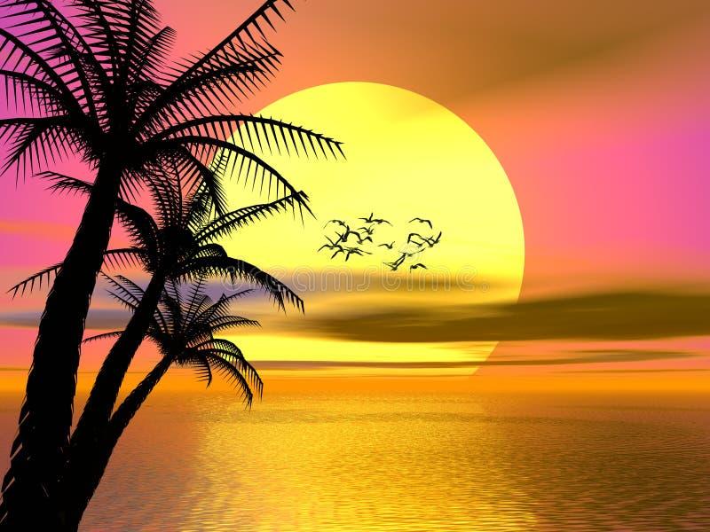 Puesta del sol tropical colorida, salida del sol libre illustration