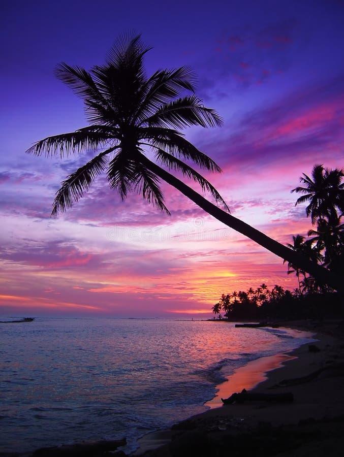 Puesta del sol tropical hermosa imágenes de archivo libres de regalías