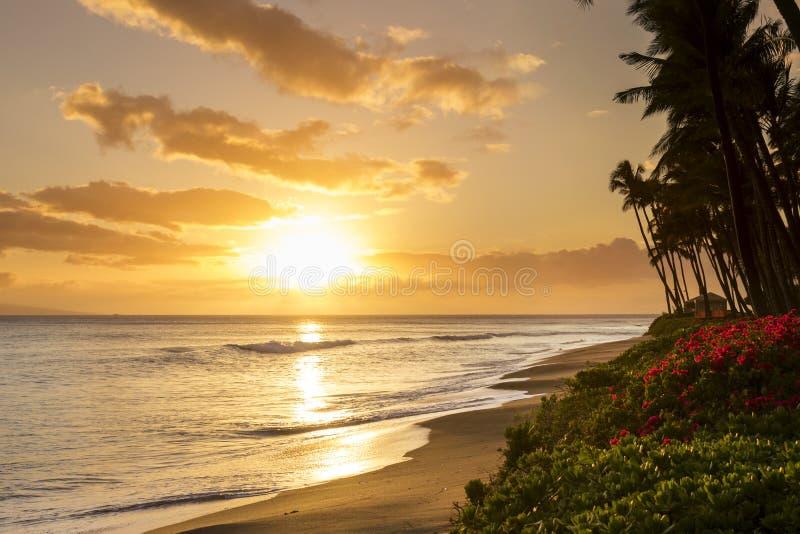 Puesta del sol tropical hermosa en la playa de Kaanapali en Maui Hawaii fotos de archivo libres de regalías