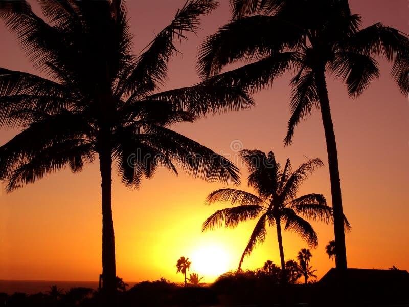 Puesta del sol tropical pacífica foto de archivo libre de regalías
