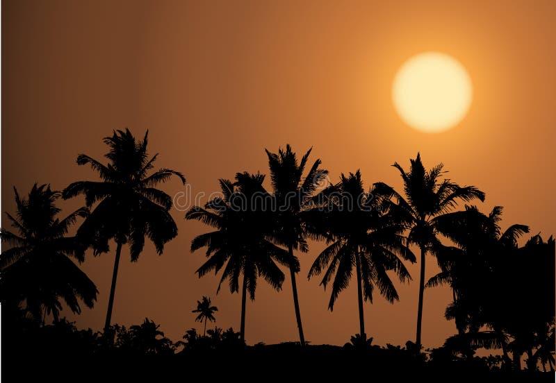 Puesta del sol tropical, silueta de la palmera ilustración del vector