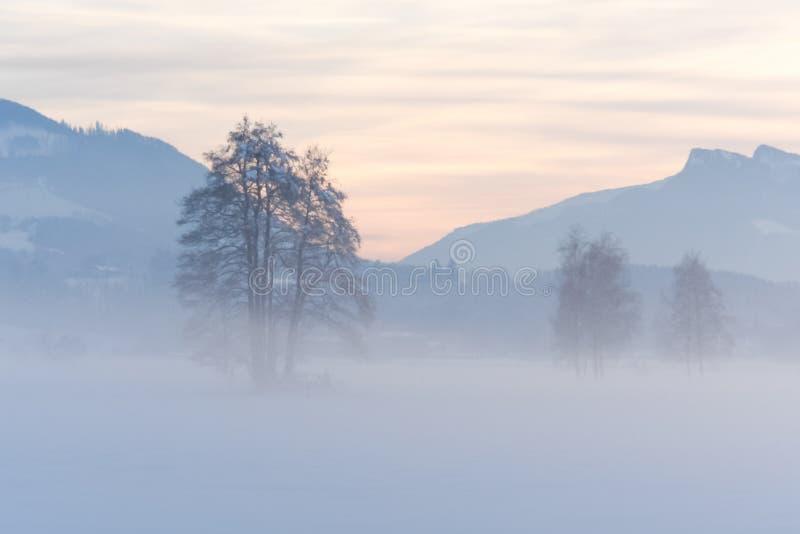 Puesta del sol y campo alpinos Nevado imágenes de archivo libres de regalías