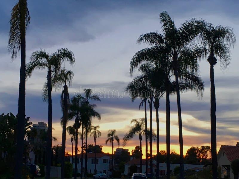Puesta del sol y palmas en San Diego imagenes de archivo