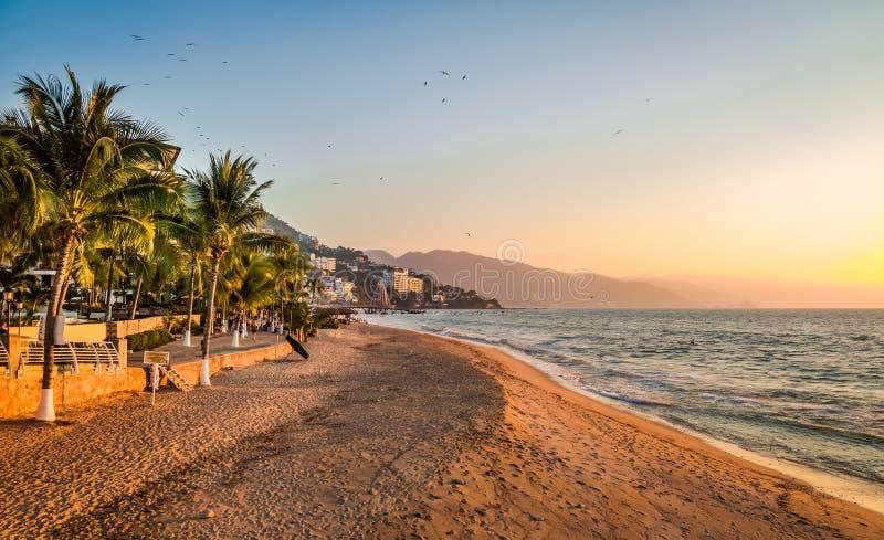 Puesta del sol y palmas - Puerto Vallarta, Jalisco, México de Puerto Vallarta imagenes de archivo