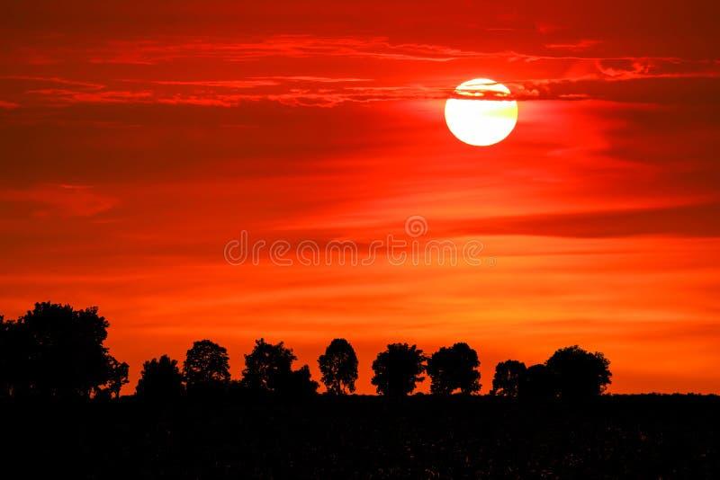 puesta del sol y ?rbol colorido de la silueta de la nube de la llama en el cielo rojo fotografía de archivo
