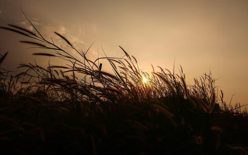 Puestas del sol y salidas del sol imagenes de archivo