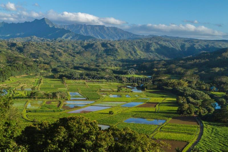 Puesto de observación del valle de Hanalei en Kauai, Hawaii foto de archivo