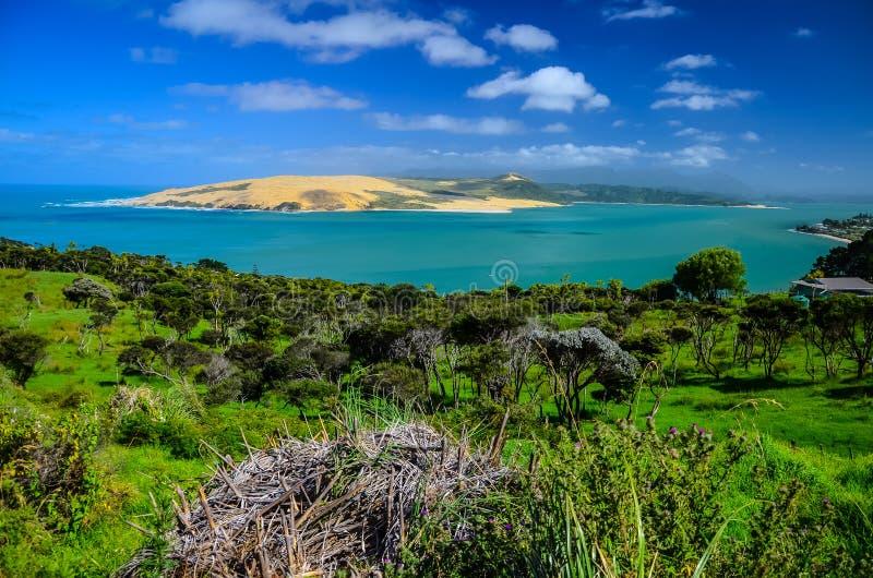 Puesto de observación de la colina de Pakia con el mar azul y el cielo azul arriba, tierra del norte, isla del norte, Nueva Zelan fotos de archivo