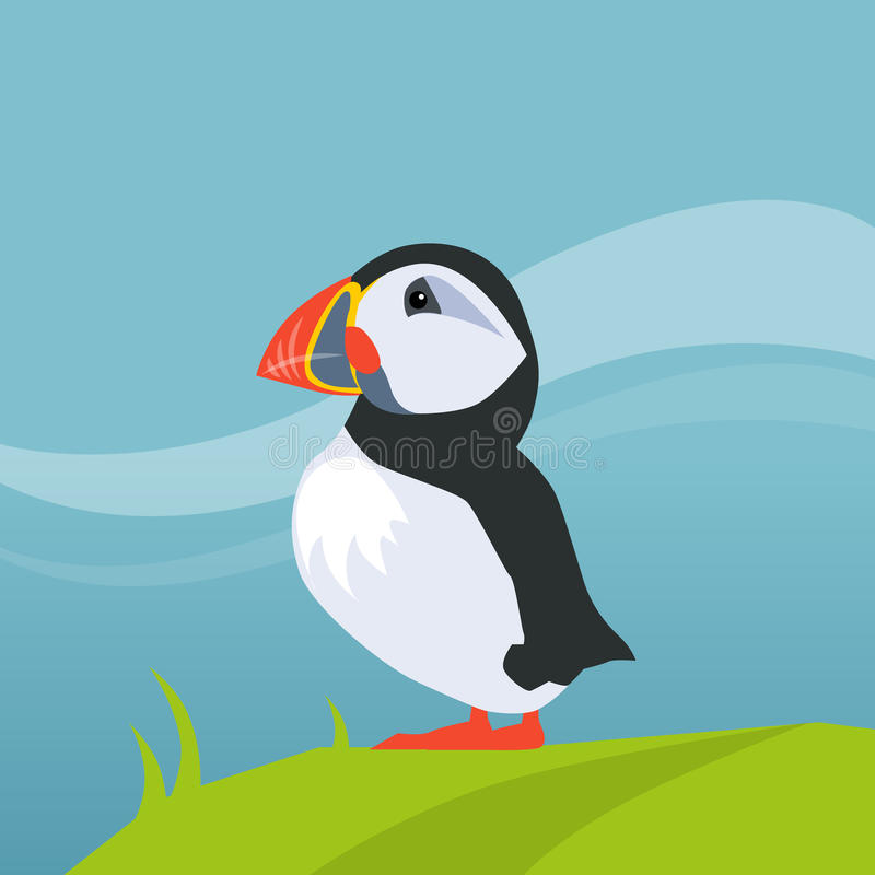 Puffin Bird In Iceland stock illustration