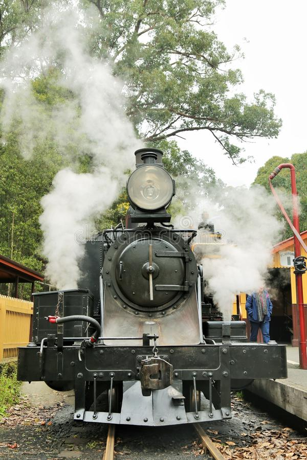 Puffing Billy royalty free stock photo