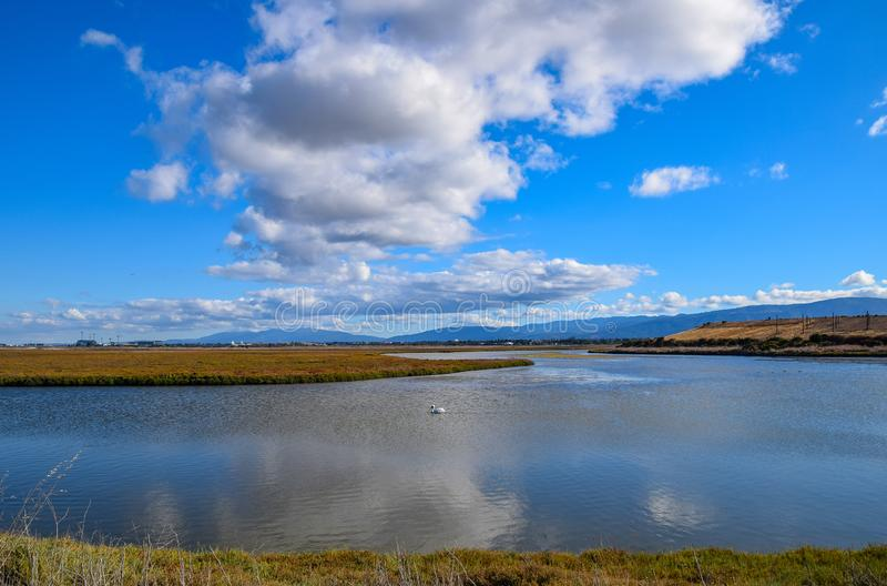 Puffy Clouds Over Baylands Reserve. Baylands Reserve is in Palo Alto, California on the San Francisco Bay royalty free stock image