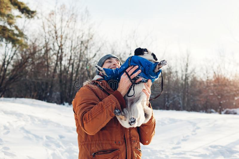 Pug dog walking with his master. Man playing with his pet and having fun. Puppy wearing winter coat. royalty free stock image