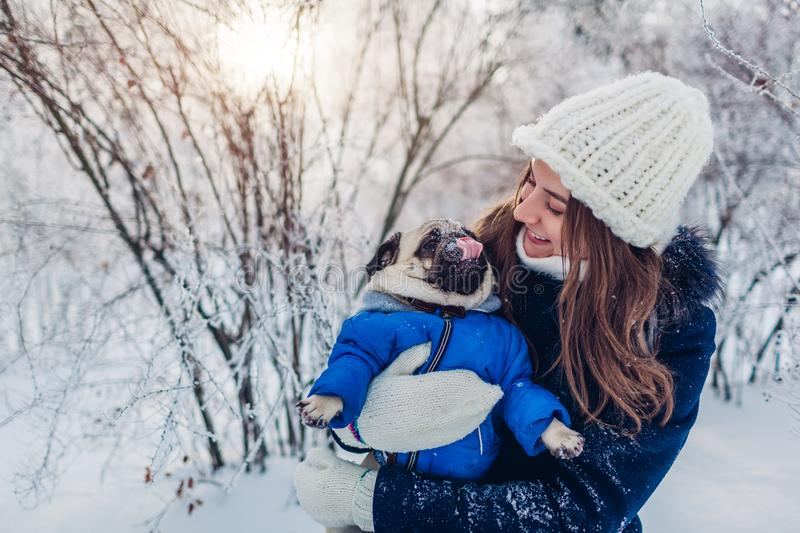 Pug dog walking on snow with his master. Puppy wearing winter coat. Woman hugging his pet in winter forest. Clothes for animals stock photo