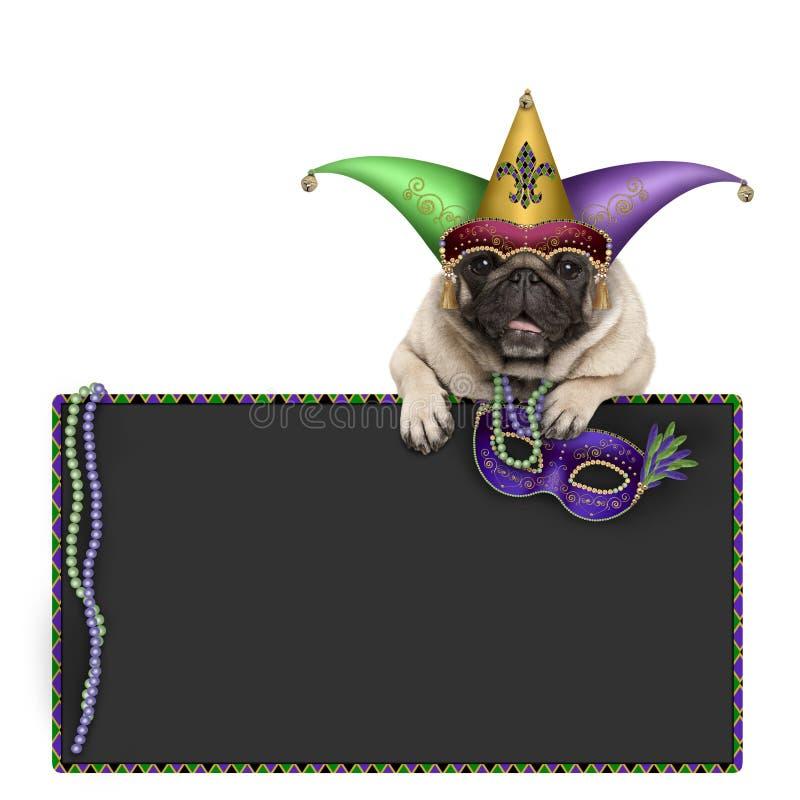 Pug van Carnaval van Mardigras hond met Carnaval-hoed, parels, de hoed van de harlekijnnar en het Venetiaanse masker hangen op bo royalty-vrije stock foto's