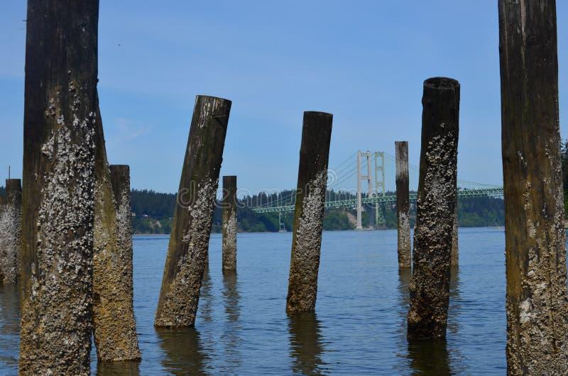 Puget Sound photo stock