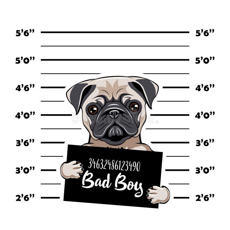 Puggefangener Festnahmefoto Polizei beklebt, Polizei Mugshot, Aufstellung mit Plakaten Polizeidienststelle-Fahne Hundeverbrecher  lizenzfreie abbildung