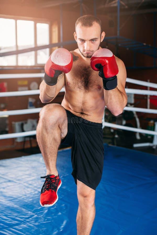 Pugilato muscolare dell'uomo nella palestra prima del combattimento fotografia stock libera da diritti