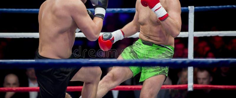 Pugilato professionale del pugile due Sport di lotta fotografie stock