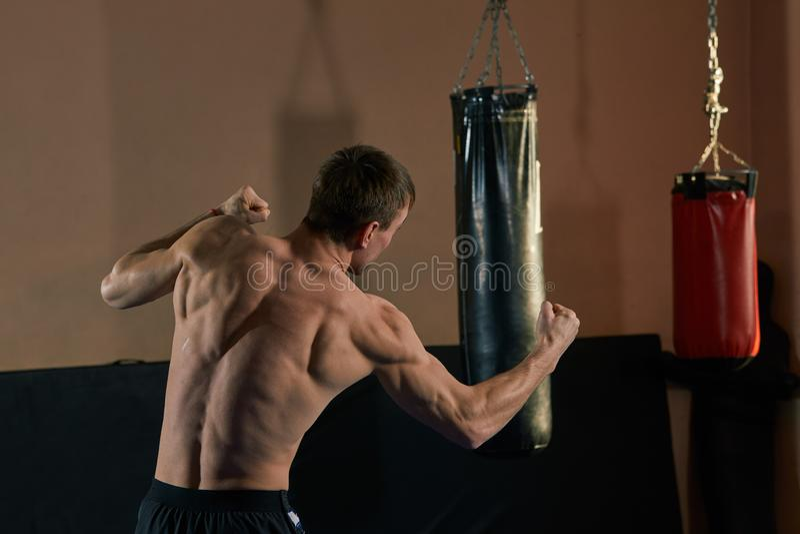 Pugile atletico che getta una perforazione feroce e potente Foto dell'uomo muscolare in palestra fotografia stock libera da diritti