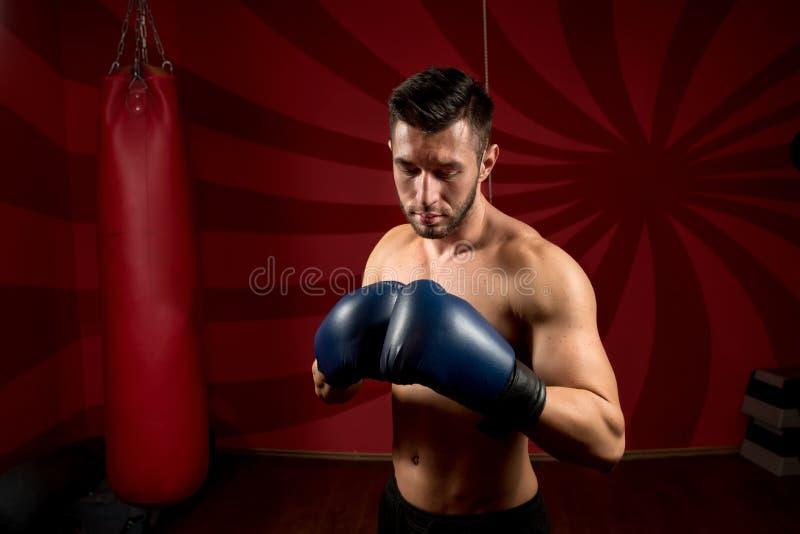 Pugilista com luvas e levantamento descamisado no gym imagem de stock royalty free
