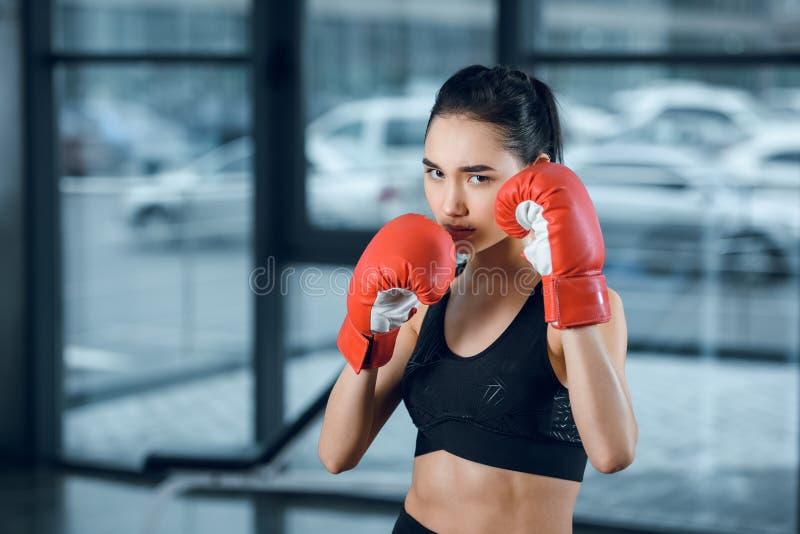 pugilista fêmea novo nas luvas na vista do gym imagens de stock
