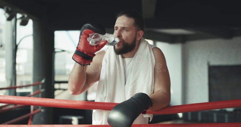 Pugilista que toma uma ruptura que bebe da garrafa de água após a formação no gym Homem após o treinamento resistente imagens de stock royalty free
