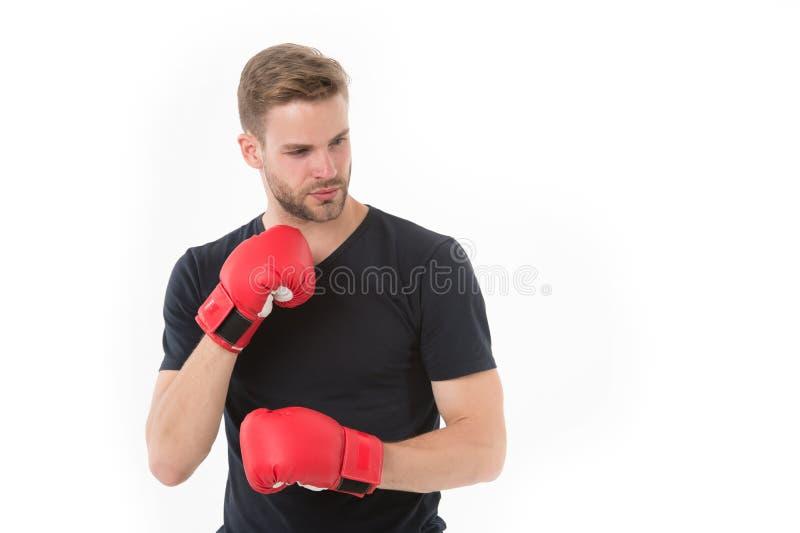 Pugilista seguro Treinamento do desportista com luvas de encaixotamento Conceito do encaixotamento Cara concentrada atleta do hom imagens de stock