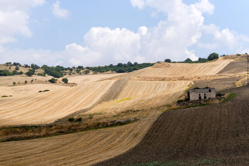 Between Puglia and Basilicata (Italy). Country landscape at summer stock images
