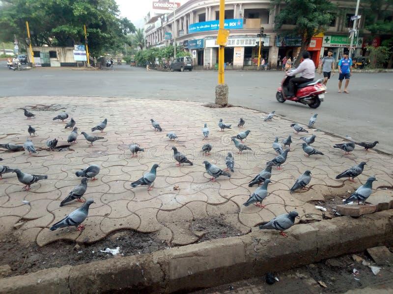Puissance de l'Inde de ???????? d'unité photographie stock