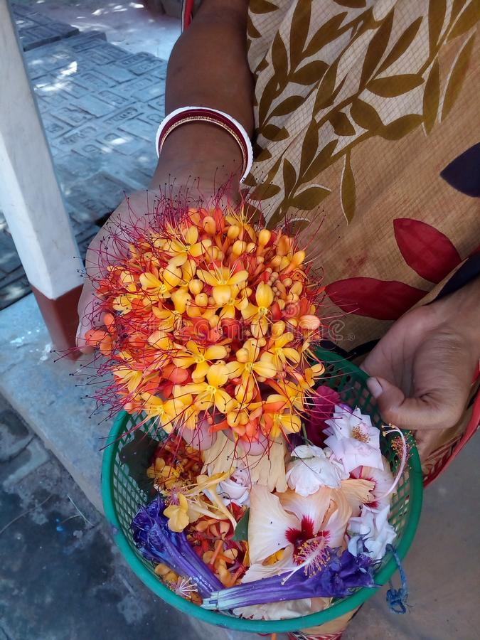 Puja de fleurs photos libres de droits
